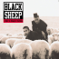 Today in Hip-Hop History: Black Sheep's Debut LP 'A Wolf In Sheep's Clothing' Turns 30 Years Old!