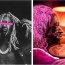 Young Thug's 'PUNK' Hits No. 1 on Billboard 200 Chart